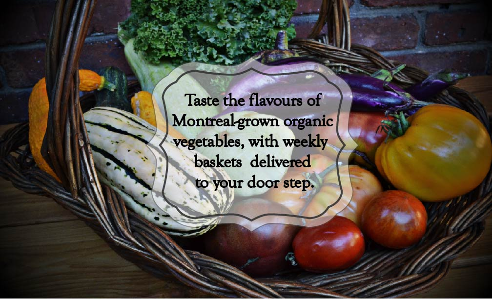 Local, Organic Veggies! Delivered to your doorstep